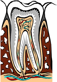 Root Canal Therapy: A Closer Look
