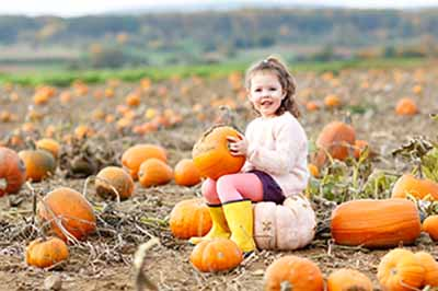 Why Your San Mateo Dentist Recommends Pumpkin